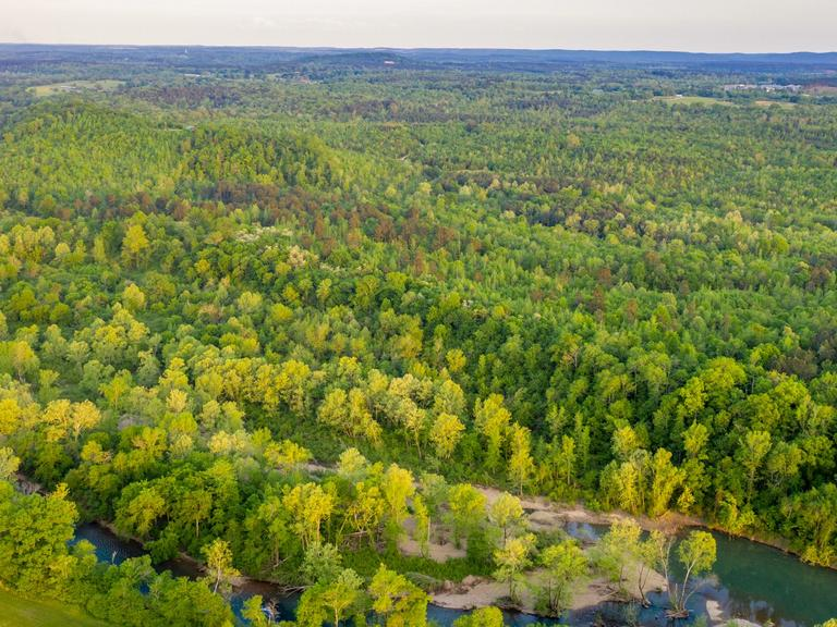 309+/- PIKE COUNTY ABSOLUTE LAND AUCTION ~ AMITY, AR